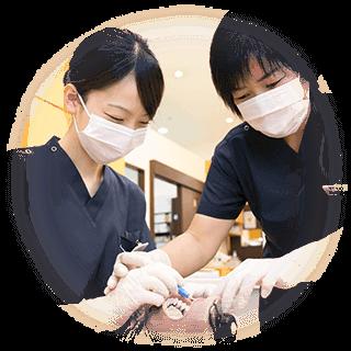 治療中の歯科スタッフ